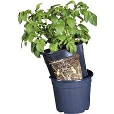 Garden Life Espalier og plantestativ - Potato pot