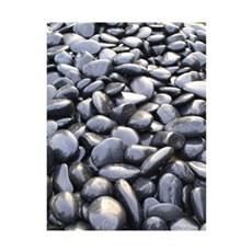 P&N Vandsten - Dekorations sten, sorte